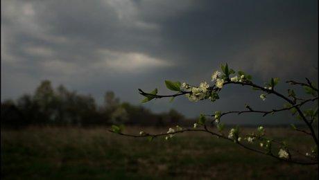 Кугарчинский район село побоище погода