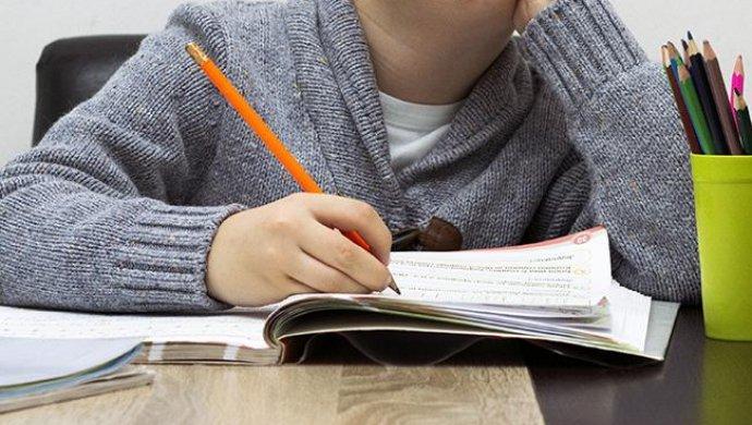 Семья из Павлодара все еще отказывается водить детей в школу (ВИДЕО)