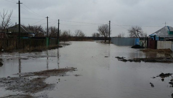 Стихийное бедствие в Кызылординской области. Вода затопила 60 гектаров пастбищ (ВИДЕО)