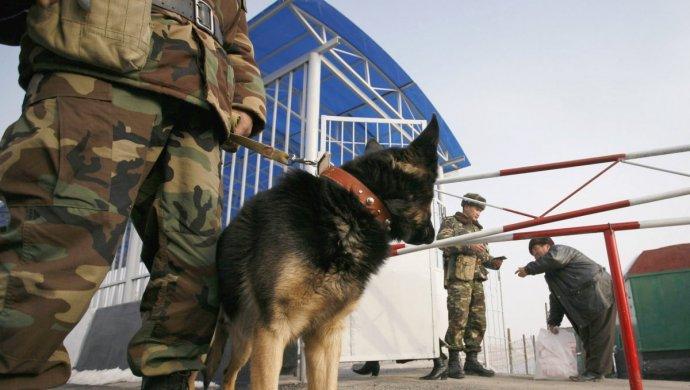 В МИД прокомментировали смерть казахстанца на границе с Кыргызстаном