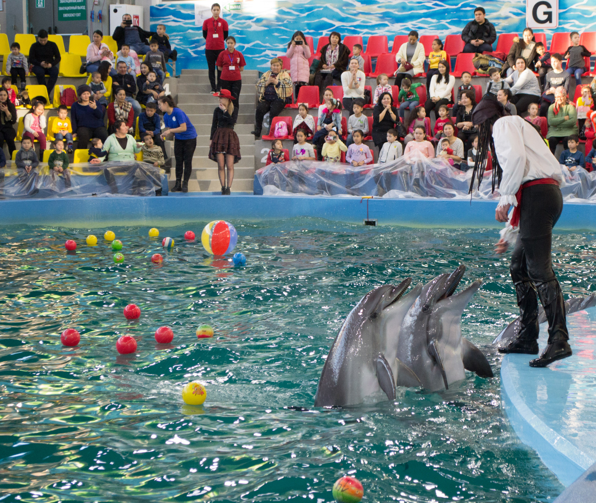 Дельфинарий в астане фото