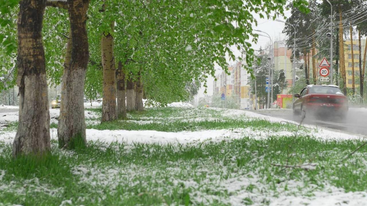 Снег и заморозки спрогнозировали в одном из регионов Казахстана