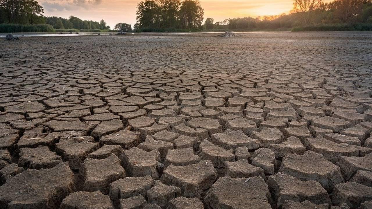 Засуха ожидается в Казахстане