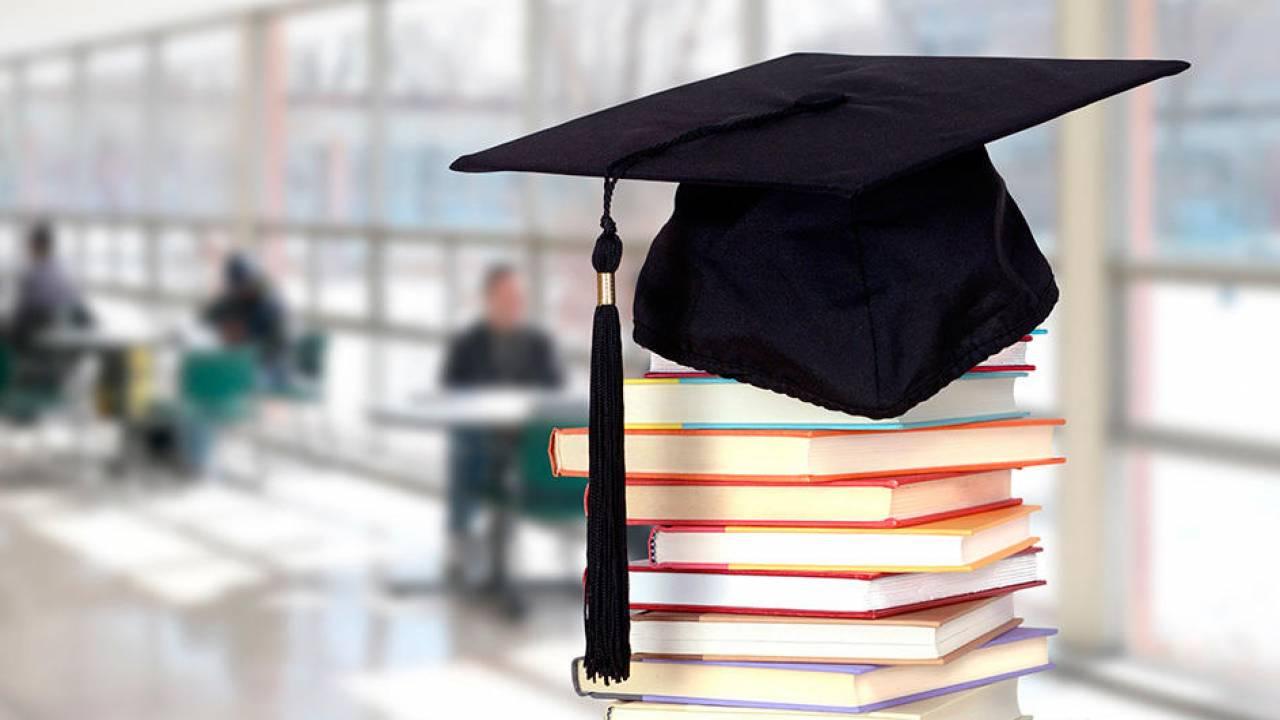 Сколько грантов выделено для поступления в магистратуру и докторантуру в РК