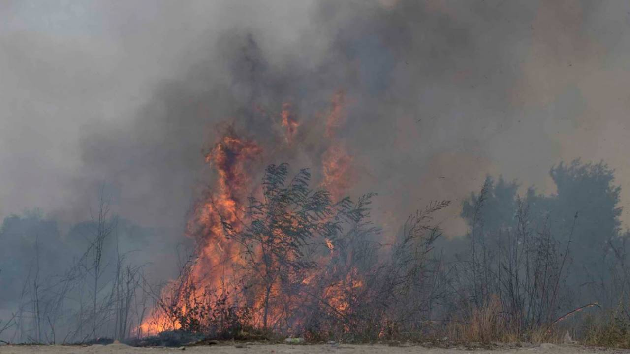 Крупный пожар охватил Коринское ущелье в Алматинской области